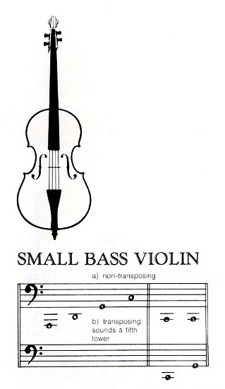 small-bass-violin